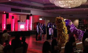 lion dance dj booth web